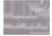 Green Schools Platinum logo